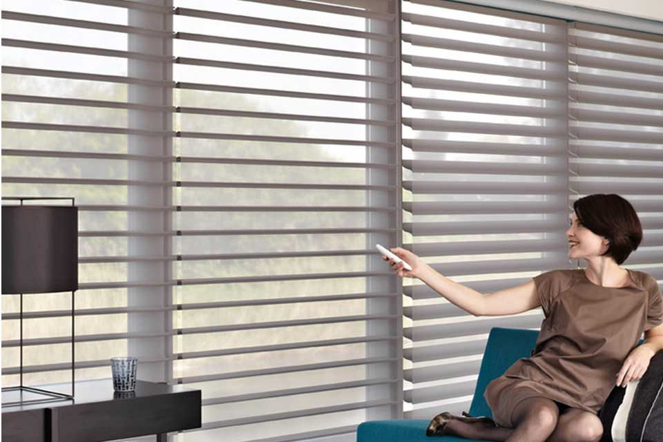 Luxaflex Silhouette Shades